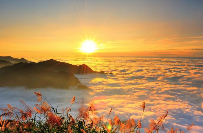「台灣八景」阿里山:台灣歷史上最盛大的「景點灌票」活動